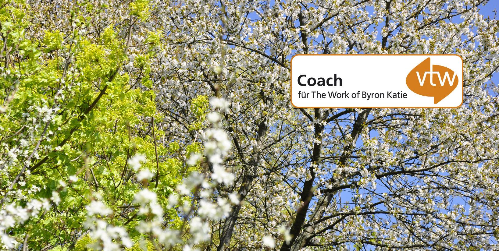 online The Work Coaching Ausbildung